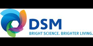 NaGa Solar Partner DSM