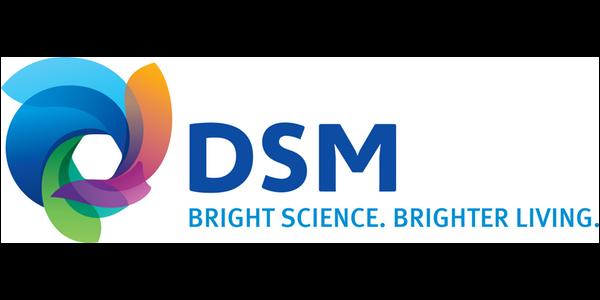 DSM NL
